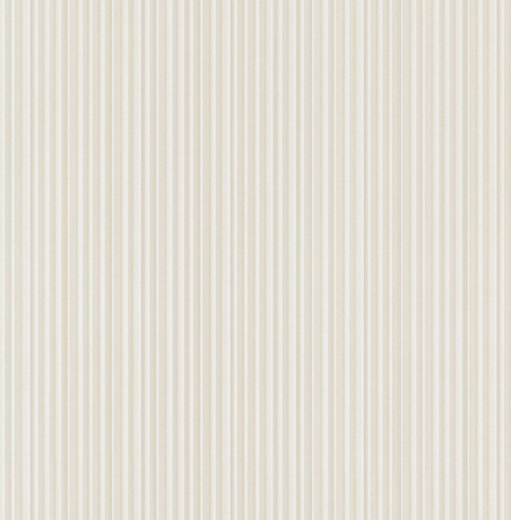 TITANIUM – RM31310